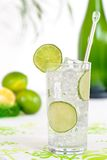 Gin & Tonic. Gin and tonic with lime twist royalty free stock image