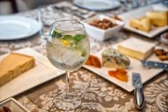 Gin tonic royaltyfri fotografi