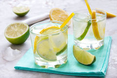 Gin and tonic. Alcoholic drink (gin and tonic) with lemon, lime and ice royalty free stock photo