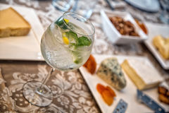 Gin Tonic. And antipasto background Stock Images