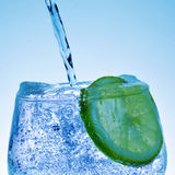 Gin and tonic Royalty Free Stock Photo