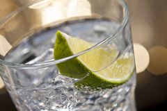 Gin Tonic Cocktail Royalty Free Stock Image