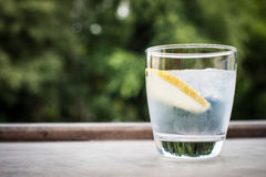 Gin and tonic cocktail. With lemon Royalty Free Stock Images