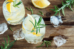 Gin Tonic Cocktail with lemon, rosemary Royalty Free Stock Images