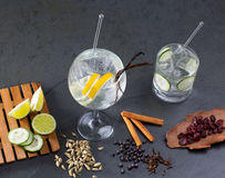 Gin tonic cocktail with lima and many spices Stock Image