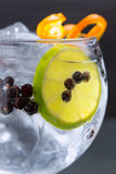 Gin tonic cocktail macro closeup with juniper berries. Orange and lime slice Royalty Free Stock Images