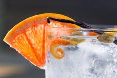 Gin tonic cocktail macro with ice grapefruit cardamom vanilla royalty free stock photos