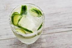 Gin Tonic Cocktail med gurkaskivor och is arkivbild