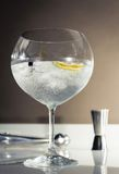 Gin tonic cocktail over a club bar background Royalty Free Stock Photography