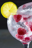 Gin tonic cocktail with raspberry and ice macro closeup Royalty Free Stock Images