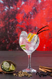 Gin tonic cocktail with spices in red grunge background Stock Images