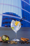 Gin tonic cocktail with spices in urban city buildings Royalty Free Stock Photo