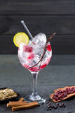 Gin tonic cocktail with vanilla raspberry lima slice and ice Stock Photography