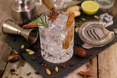 Gin and tonic cocktails with rosemary star anise and cinnamon stock images
