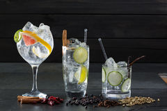 Gin Tonic Cocktails With Lima Cucumber And Grapefruit Royalty Free Stock Images