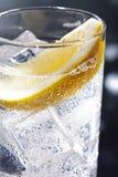 Gin Tonic eller Tom Collins royaltyfri bild