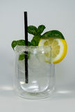 Gin tonic. Garnished with lemon and a straw stock images