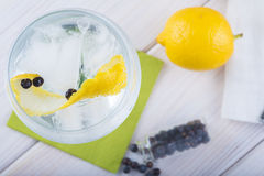 Gin and tonic on a highball glass Stock Images