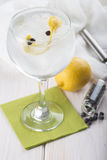 Gin and tonic on a highball glass Royalty Free Stock Images