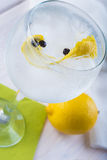 Gin and tonic on a highball glass Stock Image