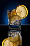 Gin with tonic; ice and lemon Royalty Free Stock Images