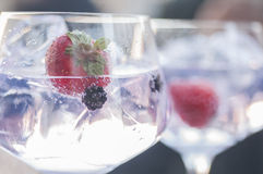 Gin and tonic. With lime ice and other fruits stock photography