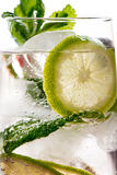 Gin tonic with lime, ice and red fruit Royalty Free Stock Photos