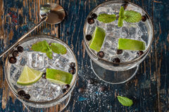 Gin and Tonic. With Lime and Juniper Berries in coupes royalty free stock photos