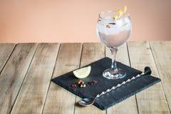 Gin Tonic med botanicals och stångsked på den wood tabellen Royaltyfri Bild