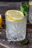 Gin Tonic med den nya citronen royaltyfri fotografi