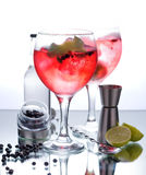Gin tonic. Photographs of a gin tonic with red fruits and glass isolated on white background royalty free stock image