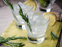 Gin and tonic. With a slice of lemon and a sprig of rosemary royalty free stock image