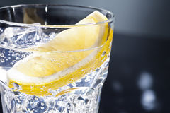 Gin Tonic or Tom Collins Stock Images