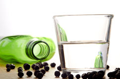 Gin in vetro e bacche di ginepro Immagini Stock Libere da Diritti