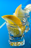 Gin With Lemon On A Glass Table Stock Photo