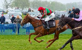 Gina Andrews.Point To Point horse racing. Gina Andrews, amateur jockey, galloping on her mount Forgiving  to victory on the run in in one of her 5 wins out of 6 stock photos