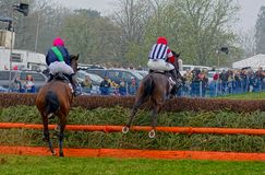 Gina Andrews. Horse racing. Point to Point victory. Gina Andrews right, amateur jockey, on the horse Man of Steel on her way way to victory at the last fence in stock photography