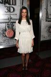Gina Holden royalty-vrije stock foto