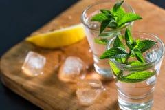 Ginebra o vodka con la menta y el limón con hielo imagen de archivo libre de regalías