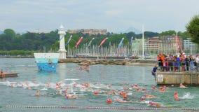 GINEBRA - SUIZA, AGOSTO DE 2015: competencia pública de la natación en el lago almacen de video