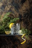 Ginebra, tónico con las rebanadas de limón y una puntilla del enebro imagen de archivo libre de regalías