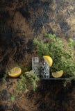 Ginebra, tónico con las rebanadas de limón y una puntilla del enebro Fotografía de archivo