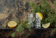 Ginebra, tónico con las rebanadas de limón y una puntilla del enebro Imagenes de archivo