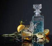 Ginebra-tónico del cóctel con las rebanadas del limón y las ramitas del romero imagen de archivo libre de regalías