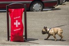 Ginevra Svizzera, luppolo Suisse per la coppa del Mondo di calcio Immagine Stock Libera da Diritti