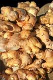 ginger świeże Obraz Royalty Free