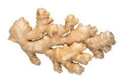 ginger świeże Zdjęcia Royalty Free