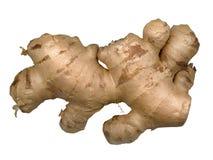 ginger Zdjęcia Royalty Free