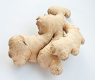 Ginger Royalty Free Stock Image