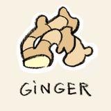 ginger Fotos de Stock Royalty Free